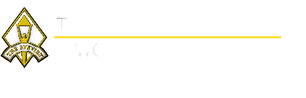 stevie awards ten bear group consumer intelligence